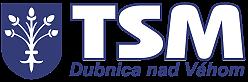 Technické služby Dubnica n/V s.r.o.